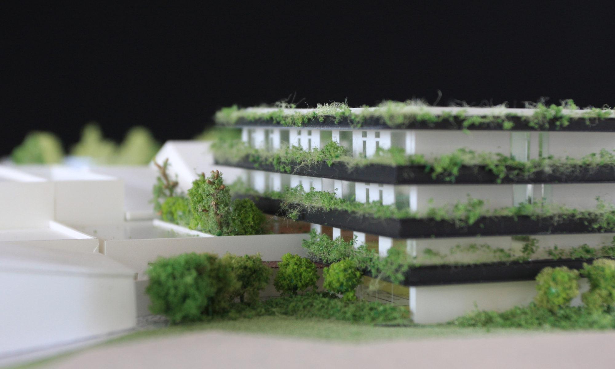 山本建築設計事務所 | yamamoto archi